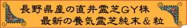 皇室献上品の直井幸雄先生の直井霊芝GY株を使用した養気霊芝純末とエキストラ粒・パワフル健康食品