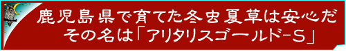 日本国内産の冬虫夏草サプリメント